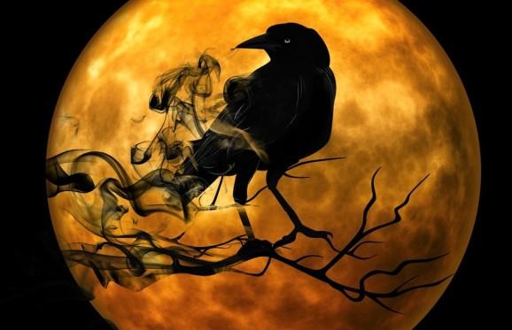 Raven In Moon